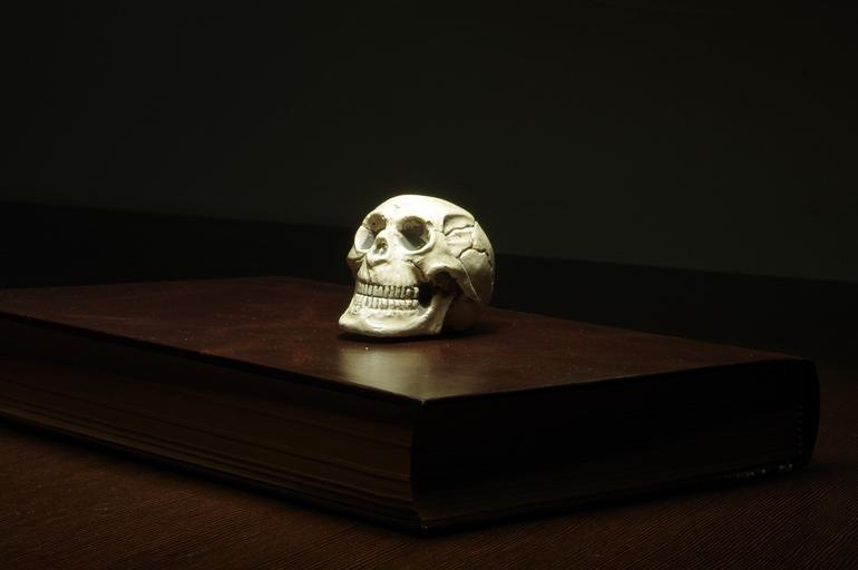 lebka na knize
